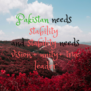 image shows a quote for stability needs